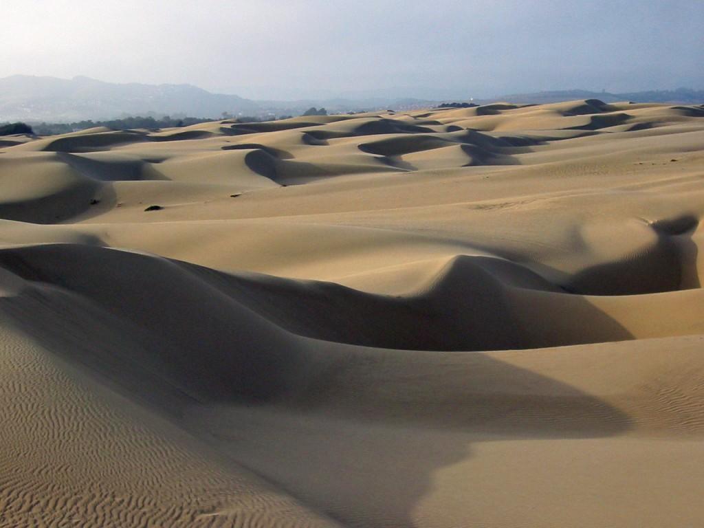 Sand dunes at Oceano, Flickr, mikebaird