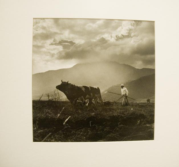 """Exposición de fotografías de Juan Rulfo. Universidad de Los Andes. """"Campesino con yuta"""" de Juan Rulfo. Fotografía: Joana Toro."""