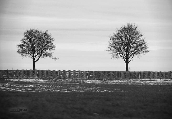 distance, Flickr, motiqua