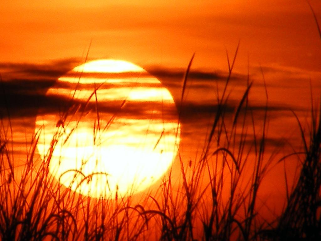 08-08-08's Morning sun, Flickr, emrank