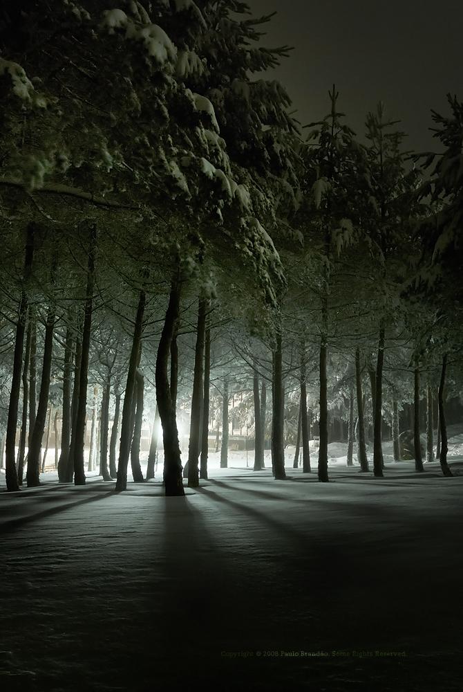 frozen light in a snow weekend, MANZANEDA, Flickr, Paulo Brandao