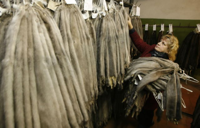 Como reconocer un abrigo de mink