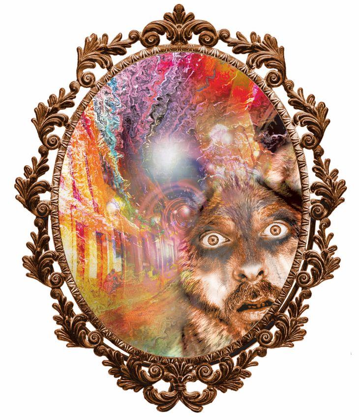 Ilustración de Diana Carolina Correa