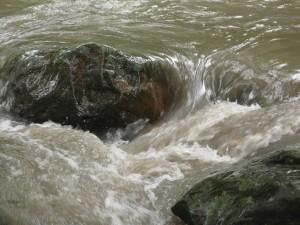 Formas caprichosas del Río Dulce (Fotografía: Eduardo)