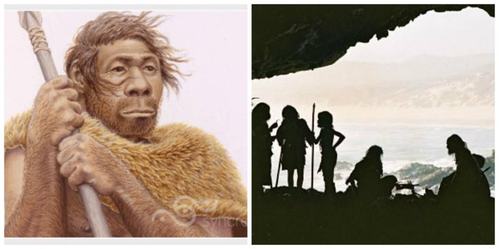 collage homo sapiens