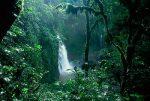 selva-amazonica1-catarata.jpg