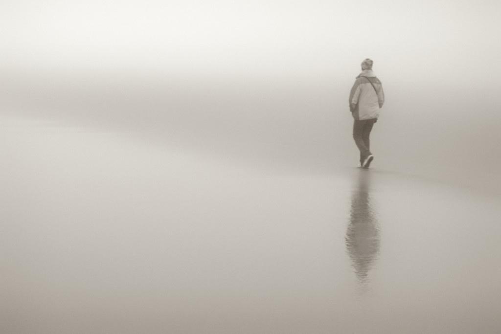 Flickr, Stephen Wolfe