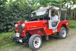 Jeep-Willys-Colombia-de-una-300x199.jpg