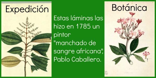 Collage Pablo Caballero b
