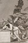 Francisco_José_de_Goya_y_Lucientes_-_The_sleep_of_reason_produces_monsters.jpg