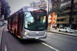 buses-padrones-carrera-septima