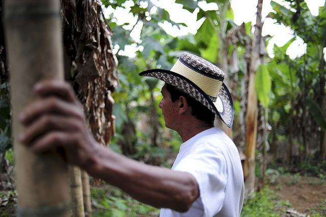 Coffee-farmer-Colombia