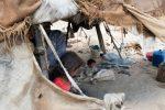 beduinos-MSB13870-1-1024x682.jpg