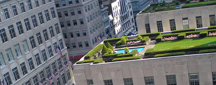 rooftopgarden