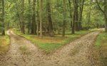 caminos.jpg