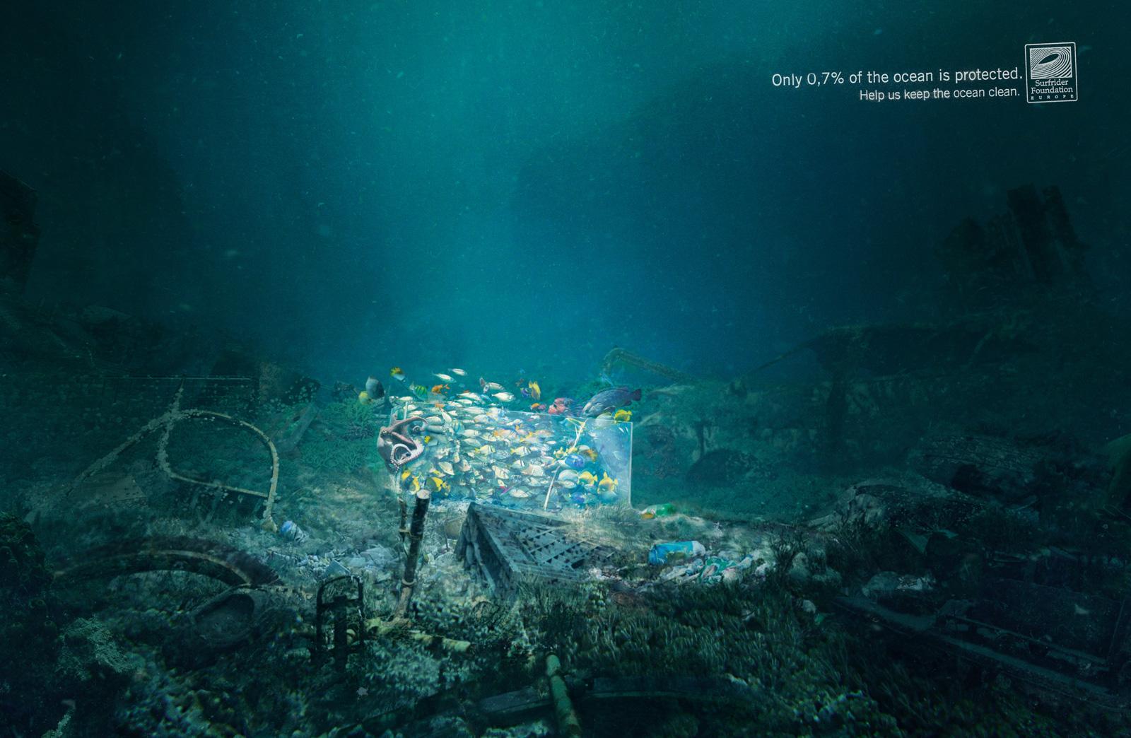 surfrider_aquarium