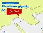 Calamar gigante (edit)