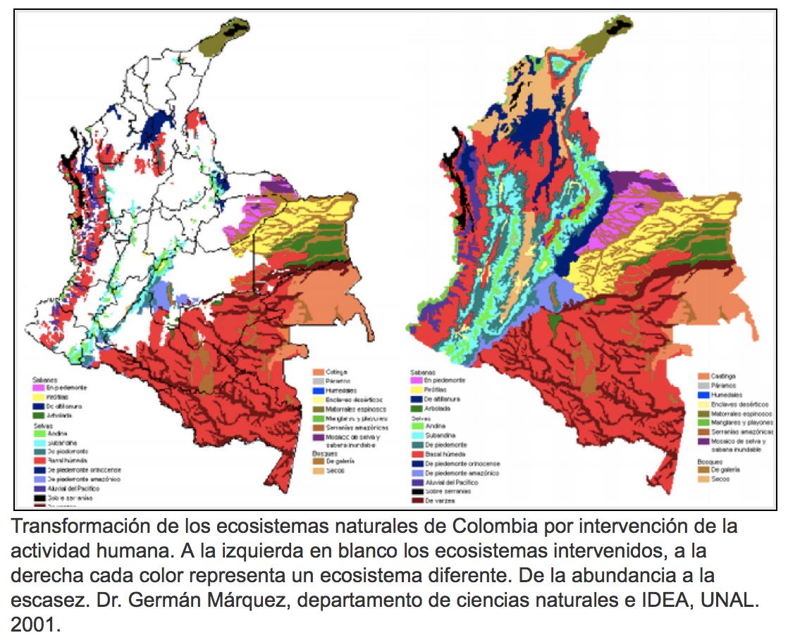 Destrucción de hábitats en Colombia a lo largo del tiempo