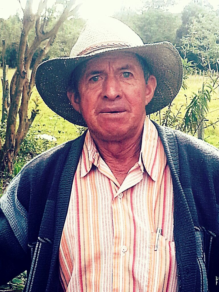 Don Hernando Suárez