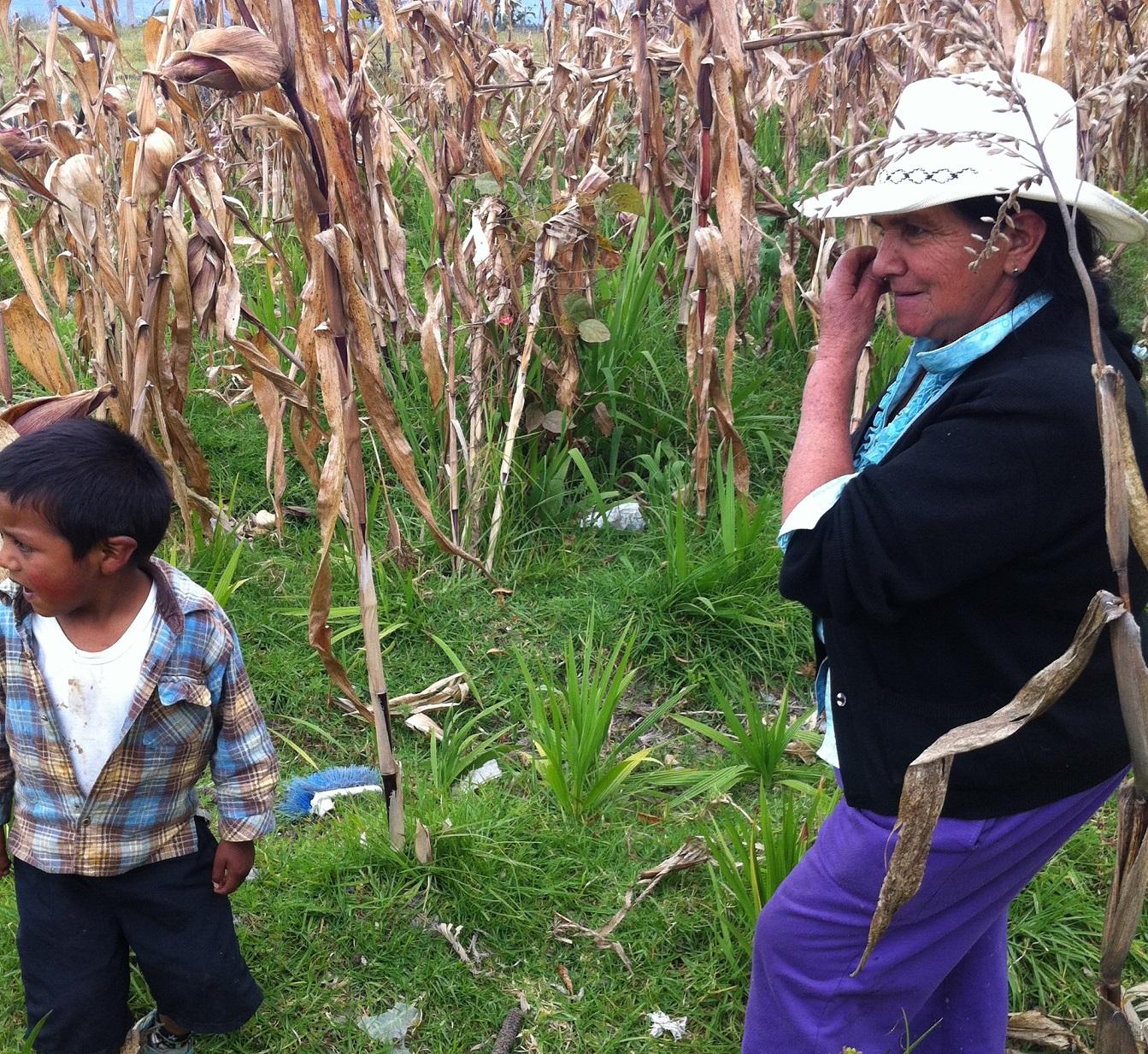 Doña Hilda y su nieto desenterrando maravillas del viejo maizal.