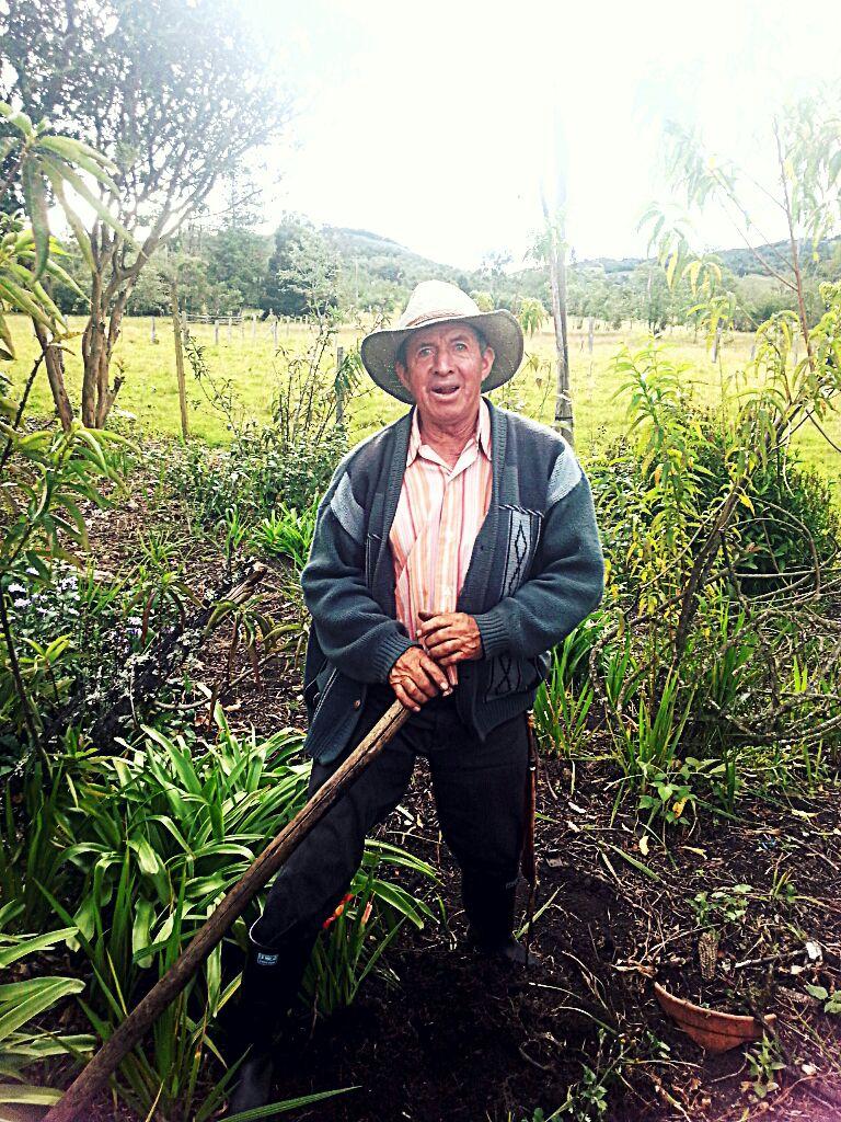 Don Hernando Suárez. El guardián de las maravillas
