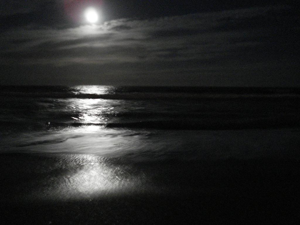 Mar_Noche