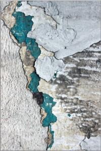 """""""Micro-cosmos,Macro-cosmos"""", de Alexandra Callamand"""