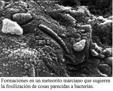 bacterias marte