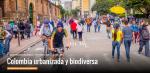 colombia urbanizada