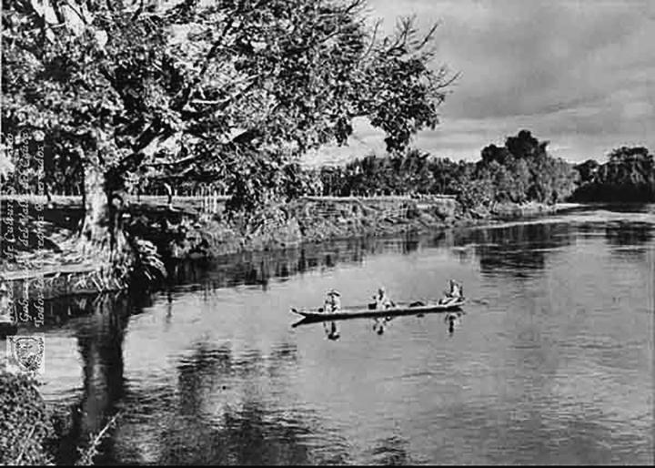 Riberas del río Cauca a principios del siglo XX1900bibliodeptaljorgegarcesborrero