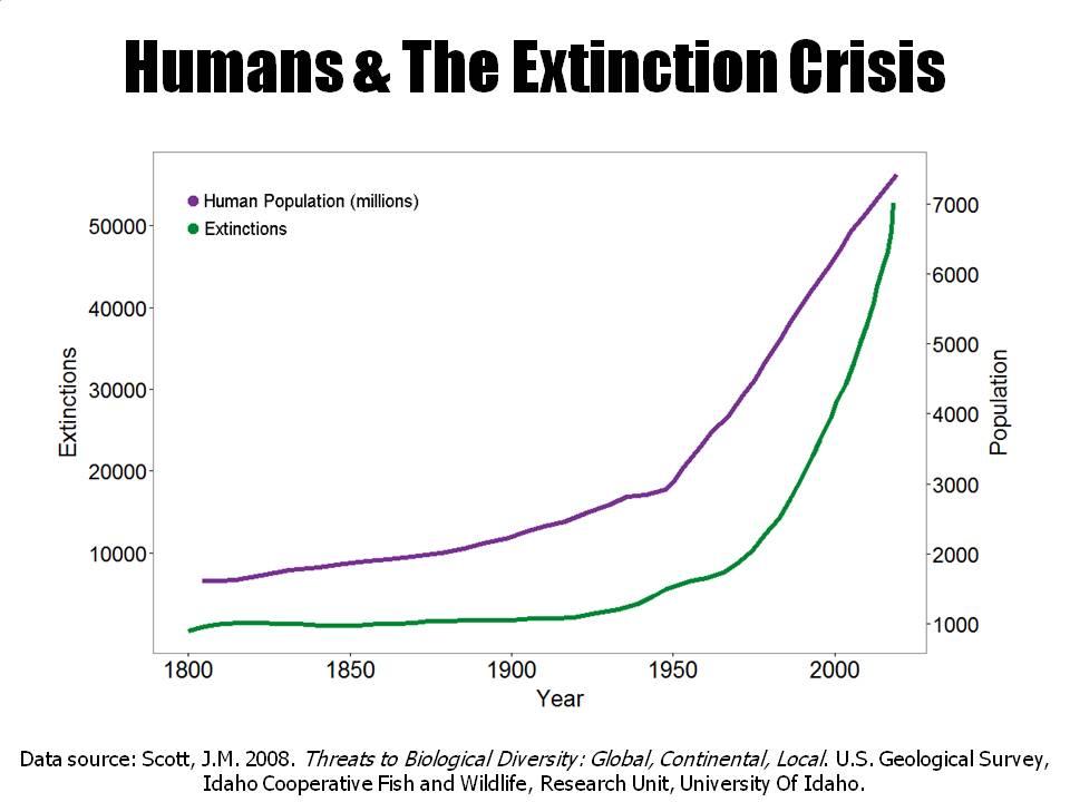 Los Humanos y la Crisis de la Extinción (de especies). Curva que muestra el aumento de la población (en millones) y el aumento del número de especies extintas.