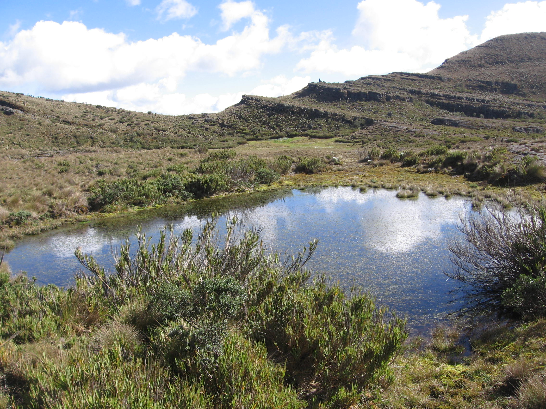 Laguna negraParamo de Oceta - Manuel galvis rueda
