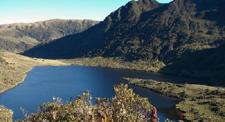 Paramo-CajamarcaAbsolut