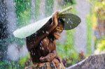 animales-paraguas-naturales-2.jpg