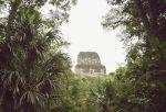 reserva-biosfera-maya-3-ok.jpg