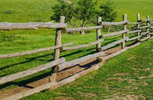 old rural wooden fence on green grass backgrounds
