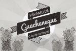GuachenequeIntro-01.jpg