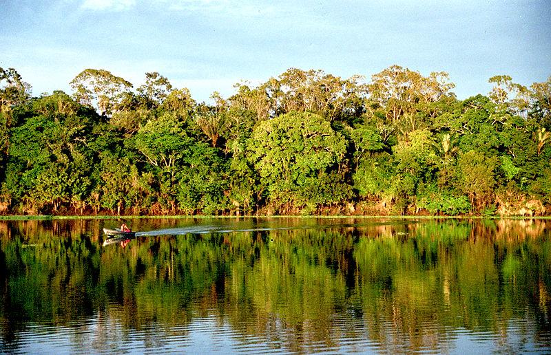 La Amazonia estuvo en los ojos del mundo durante la Iniciativa Aguas Amazónicas. Cristián Samper ha dedicado toda su vida a su estudio y conservación. Fotografía: Andre Deak.