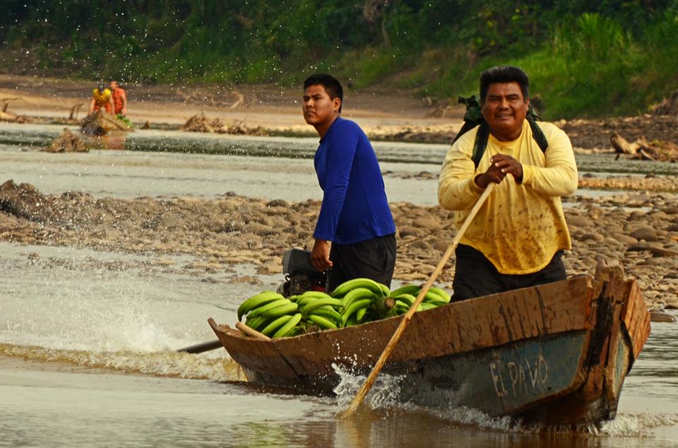Demetrio Arce transportando sus plátanos. Foto: Eduardo Franco.