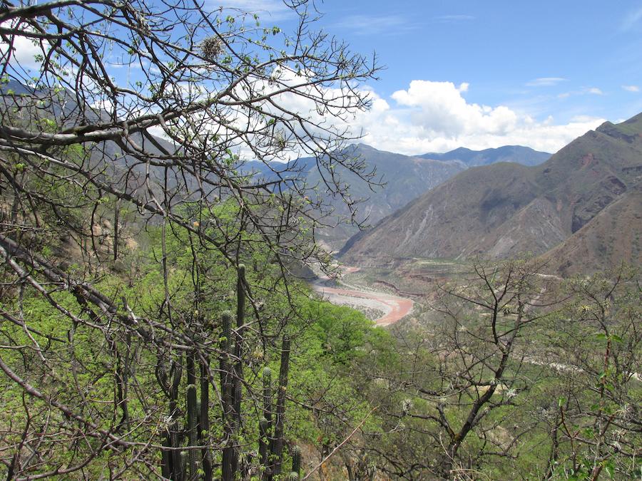 Bosques secos ubicados alrededor del río Pampas, Apurímac. Foto: Reynaldo Linares-Palomino.