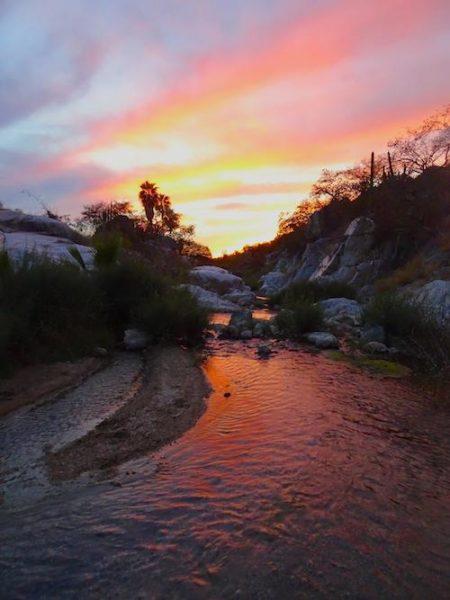 Dentro de Sierra La Laguna. Fotografía de Ben Wilder.