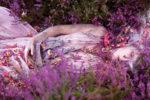 Kirsty-Mitchell-pink.jpg