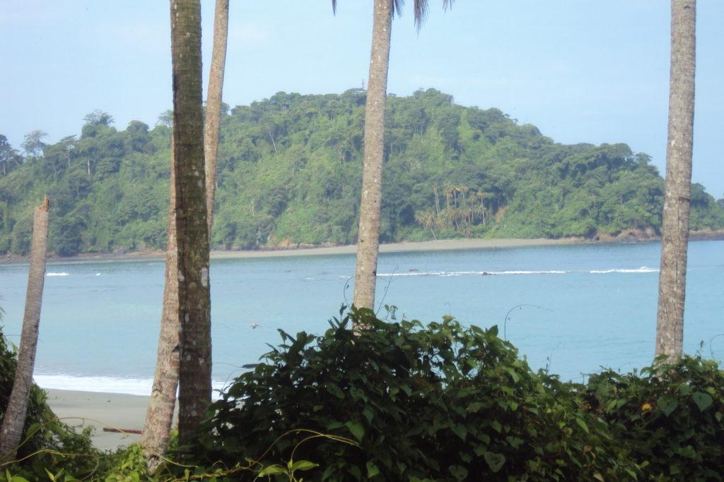 El Parque Nacional Natural Gorgona tiene 61,608 hectáreas de superficie marina y continental. Está ubicado en la isla de Gorgona en el Pacífico Colombiano. Foto: Carlos M. Tamayo.