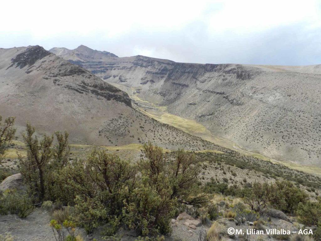 Vista de la quebrada donde se liberó a Jacobo (es la quebrada del fondo y se observa el bofedal grande y largo) Parque Nacional Sajama. Foto: Liliam Villalba - AGA.