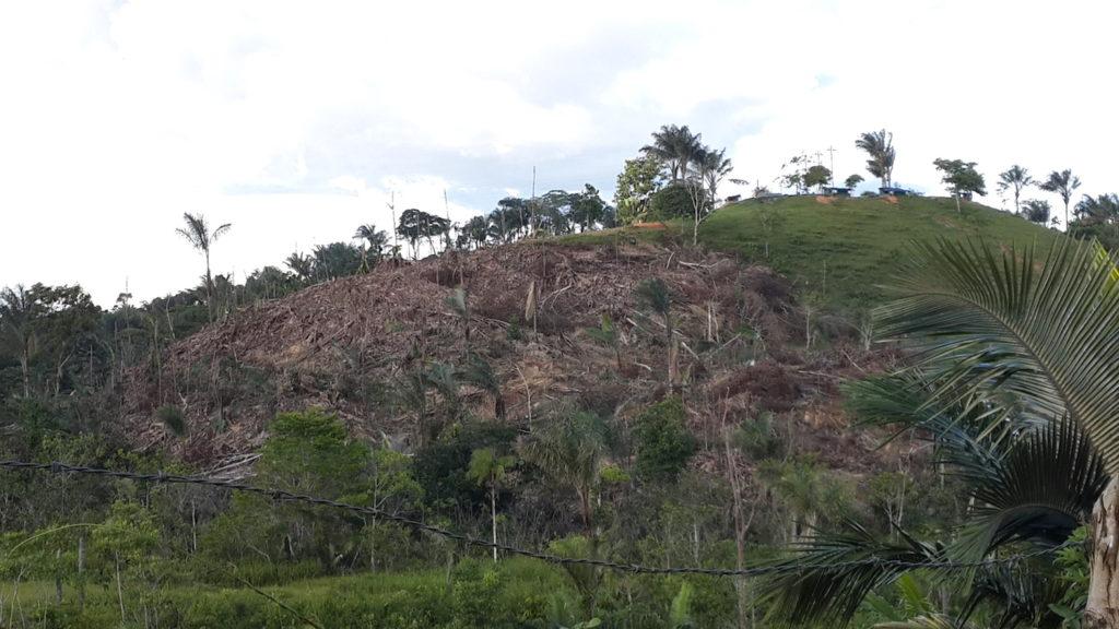 La tasa de deforestación detectada en el Caquetá, según el informe divulgado este año por el IDEAM, equivale al 19% del país y casi la mitad de la Amazonia. Foto: Cortesía de la Subdirección de Administración Ambiental, Corpoamazonia.