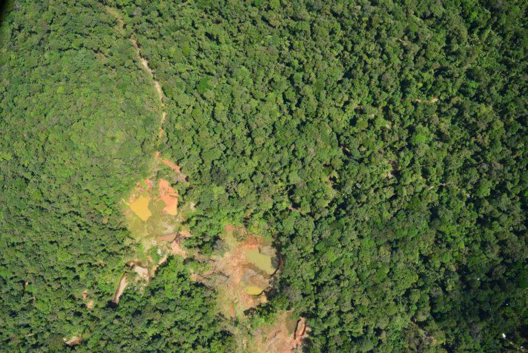 Imagen de la deforestación del Pacífico. Foto de Sobrevuelos IDEAM-UNAL, 2014.