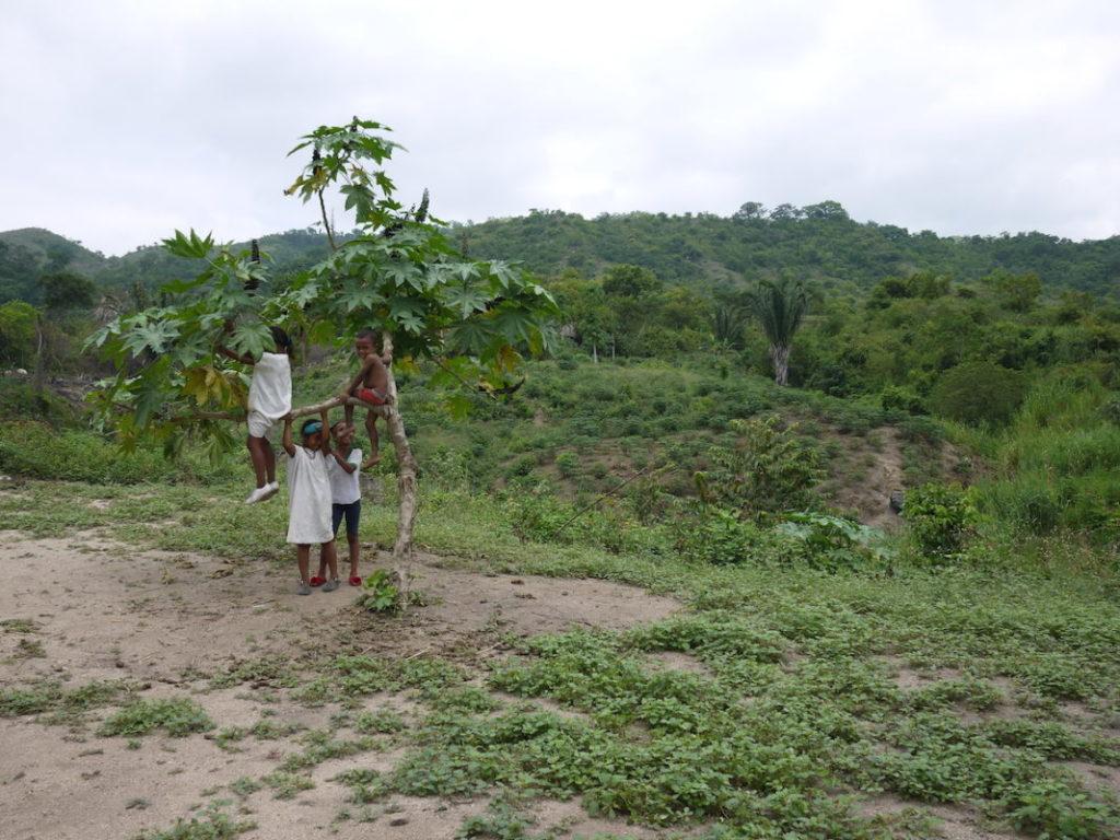 Niños Wiwa jugando cerca del bosque. Foto de Laura Dixon.