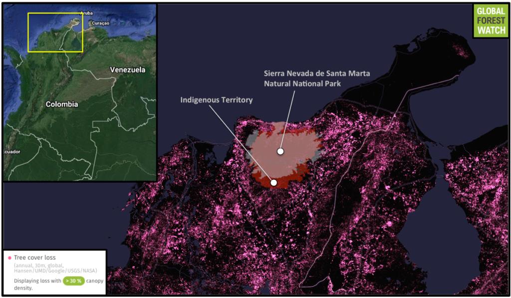 Global Forest Watch muestra la pérdida de bosques espesos en la zona que rodea las reservas indígenas y el Parque Natural Nacional Sierra Nevada de Santa Marta desde 2001 hasta 2014. Mientras algunas pérdidas afectan a las áreas protegidas, estas han experimentado comparativamente menos deforestación en los últimos 15 años.