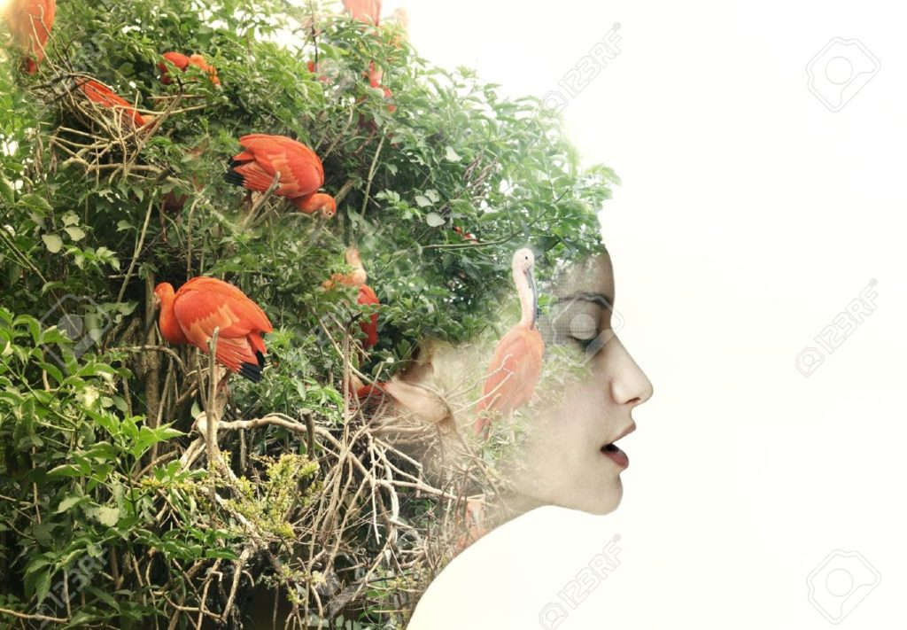 20760219-artistic-surreal-female-profile-in-a-metamorphosis-with-nature-stock-photo