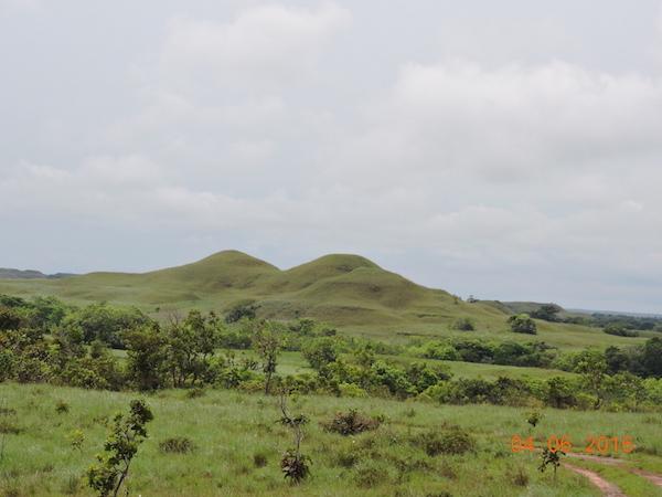 Alto Manacacías, departamento de Meta. Foto: Parques Nacionales Naturales de Colombia.